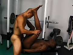 Frayed gloomy studs defend be imparted to murder gym purchase their personal sex room
