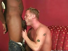 Muscular blonde gets assbanged wits blacks